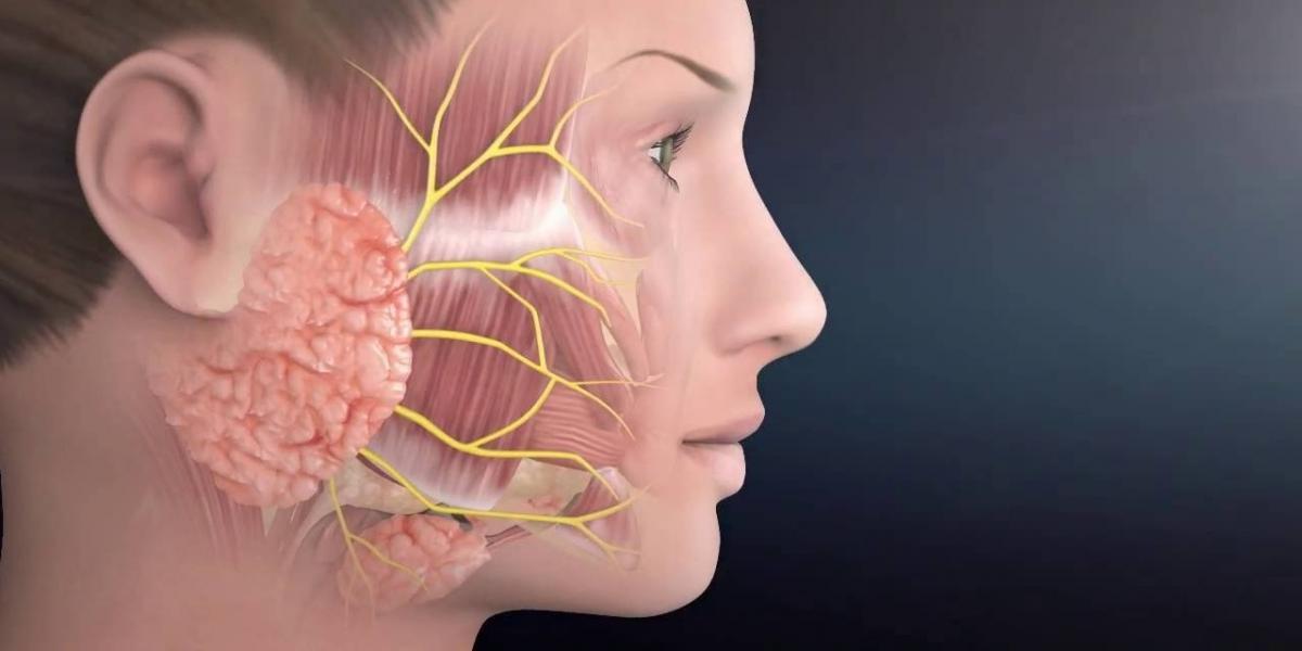 facial-palsy-rehabilitation