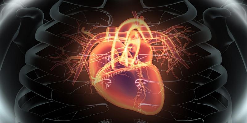 шунтирование сосудов сердца в европе