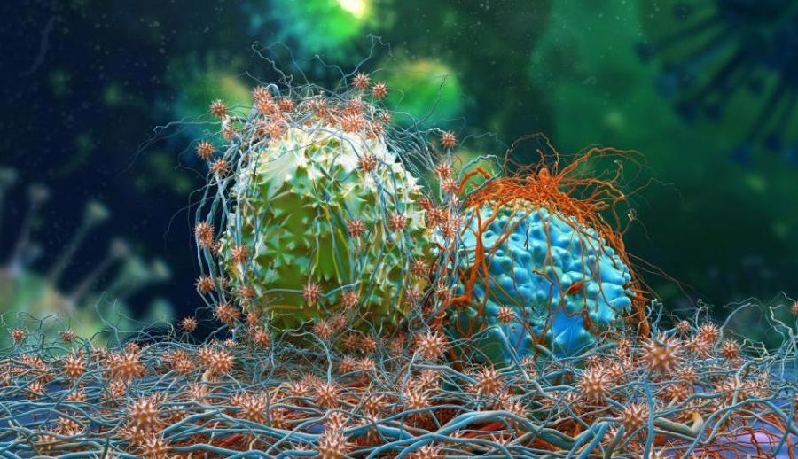 Недорогой противовоспалительный препарат «Кеторолак» может уменьшить метастазирование рака