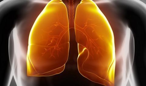Туберкулез: новый коктейль из лекарств резко сокращает время лечения