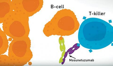 Мосунетузумаб - простая замена клеточной CAR-T терапии?