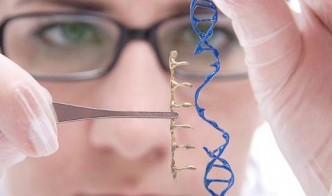 Эпилепсия — генная терапия обеспечит длительное подавление судорог
