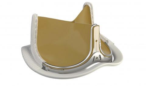 Новый тип биопротезов аортальных клапанов широко используется в клинике Эразм