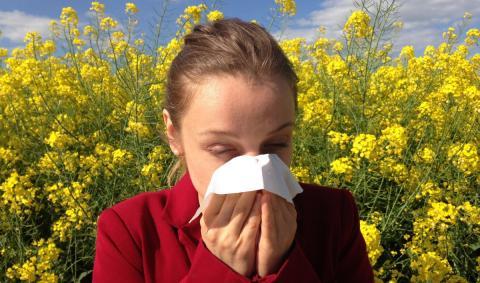 Лечение аллергии в Бельгии