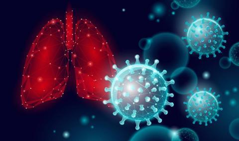 Лечение скрытой туберкулезной инфекции